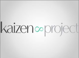 the-kaizen-project