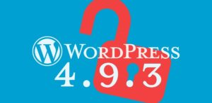 Wordpress 4.9.3 Bug